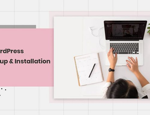 WordPress Setup and Installation for Beginners